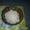 Гриб рисовый морской (индийский) #829601