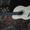Отличная немецкая гитара #992572