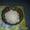 Рисовый морской индийский гриб #1127759