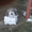 Ком Мп58-4202010,  Мп58-4202010-15 (310.3.56) на автокран шасси Маз #1517174