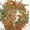 Конденсаторы,  реле,  микросхемы,  транзисторы,  разъёмы,  платы #1661021