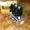 ГидроРАСПРЕДЕЛИТЕЛЬ 158F0453,  158F0460 многосекционный  Зауэр Данфосс,  Sauer-Dan