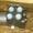 Насос-дозатор Sauer-Danfoss (гидроруль) OSPBX 315 LS 150-1084 Наличие! - Изображение #5, Объявление #865094