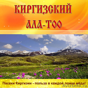 продаем горный мед из Киргизии в ассортименте оптом... - Изображение #1, Объявление #896747