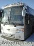 Междугородный автобус KIA Grandbird